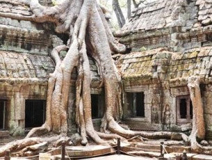 Siem Reap – Angkor Wat Discocovery By Bike – 6 days